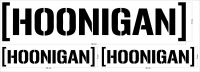 "Auto nálepka - ""Hoonigan"""